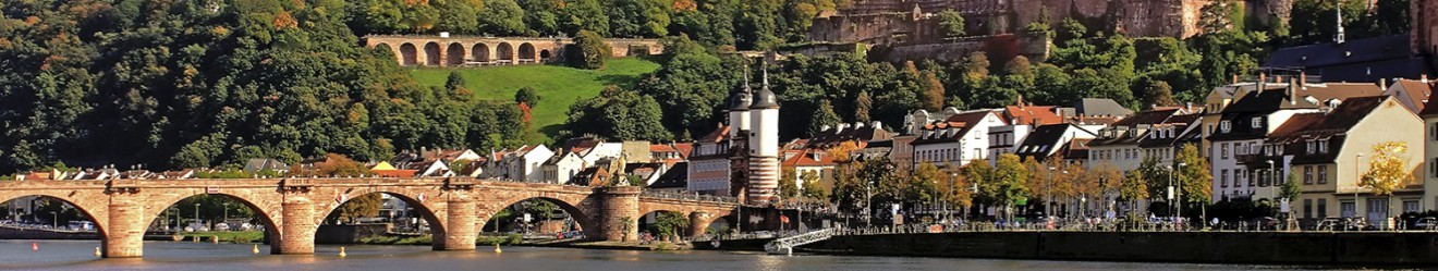 Neckar Musikfestival